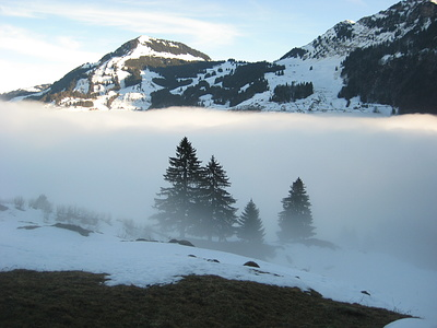 nach 20 Minuten sind wir heute schon außerhalb des Nebels