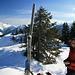 beim kleinen Gipfel oberhalb der Lerchkogel Hochlegers