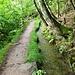 Am Partschinser Waalweg, einem jahrhundertealten Bewässerungssystem