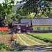Casa in comuna Bivolarie