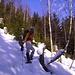 Nel bosco verso Berg