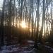 Weiter nach Osten - mit Morgensonne
