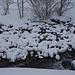 Winterzauber Engstligen