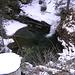 pozza d'acqua nei pressi di Tecc Stevan