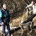 """La """"famosa"""" coppia di cani che accompagna gli escursionisti più mattinieri fin sulla cima dei Corni"""