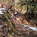 teilweise auch ebener, hier die ersten Schneeflecken