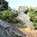 gleich am Beginn: eine der Kletterstellen