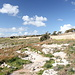 Unterwegs zwischen Ħaġar Qim und Mnajdra - Ausblick über die Hochfläche am nördlichen Wegrand.
