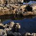 An der Mittelmeerküste bei Dwejra - Hier unweit des Felsfensters Tieqa Żerqa / Azure Window.