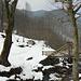 Il sentiero per la Capanna Mara, all'Alpe del Prina.