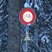 """Bikeverbot im """"schützenswerten Lebensraum"""", aber Ski- und Schneeschuhaktivitäten sind offensichtlich erlaubt, wie das Schild vis-a-vis auf dem nächsten Foto zeigt"""
