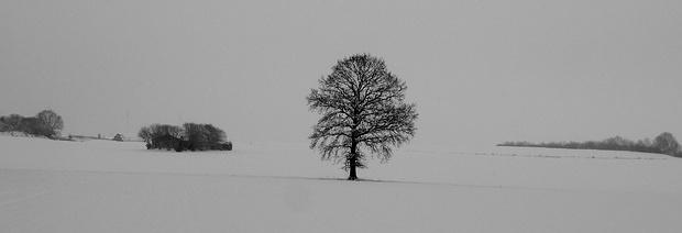 Winterpanorama!