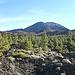 Lichter Nadelwald und schon ein Ausblick zum Krater des Pico Viejo.