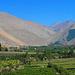 Grünes Valle de Elqui: Wo bewässert, da spriessts.