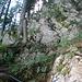 Wurzeln, Fels und Erde - wie zu sehen ist, bestens abgesichert.