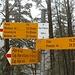Palina a Q949. Qui si congiungono 3 sentieri: quello che sale da Preonzo (destra), quello che sale da Moleno e passa sopra il ponte (sinistra), e quello che scende da monte (Alpe Gariss, Alpe di Lai. Alpe Leis)