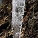 Schmelzwasser tropft von Felsen und Eiszpfen