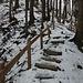Steilster Abschnitt des Treppenwegs unterhalb der Gipfellichtung.