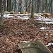 Ein/Ausstieg des Grenzsporns bei einer Feuerstelle mit natürlichen Sitzbänken 200 Meter südlich von Balderen. Beachte den Grenzstein (rechts) und die weissen Markierungen.