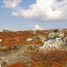 Herbstfarben, die uns noch lange in Erinnerung bleiben