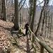 Abstieg nach Teufen. Die Exponiertheit des Geländes, deshalb auch das Geländer, kommt nicht so Richtung zur Geltung :-)