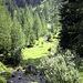 Noch unterhalb der Alpe Cristallina