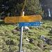 Erst zur Stockflue und dann Abstieg dem Wegweiser nach Schwyz folgend.