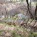 Treppenanlagen von Corippo nach Monte del Corgell