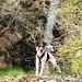 Rudi und der Wasserfall des Ri di Dentro