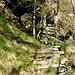 Alles in Stein - die Treppe, der Bildstock und die Felswand. Nach langem Hinschauen erkennt man den Bildstock zwischen den beiden Bäumen