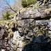 Schlüsselstelle im Crös - man achte die aufgeschichteten Steine und der Eisenbügel zum Befestigen eines Seils