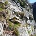 Wegausschnitt im Crös oberhalb Grèd - ja sicher, dies ist der Weg (in der Bildmitte zwei aufeinander geschichtete Steine!)