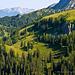 """Herrliche einsame Landschaft im oberen Königstal – nicht weit entfernt tummeln sich """"die Massen"""" am Jenner …"""