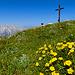 Lange Gipfelstunde am Windschartenkopf