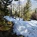 auf den letzten Meter zur Vierkaseralm beginnt der Schnee