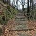 I famosi gradini di Monteviasco. Li contiamo?
