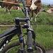 Aufstieg & Schlamm hinter uns, Kühe neben uns