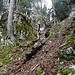 der Bergweg umgeht dieses steile Tobel ...