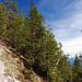 Über den Adlerweg zum Gipfel des Hundsalmjochs