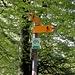 <b>Il Sentiero Smeraldo, un progetto di ecoturismo.</b>