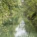 Nebenkanal bei Ottenbach