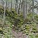 Nordaufstieg auf den Kleinen Gleichberg. Teilweise sind die Steinmauern historischen Ursprungs.