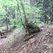 secret path up Dorsale Val Serrata (non marcato sulla CN_