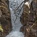 Dieses Jahr führt der Jolibach viel Wasser