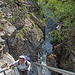 [u Diapensia] im  Aufstieg zur Hängebrücke
