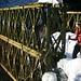 bei der Brücke über den Sinnichbach