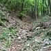 Sentiero Dal Zotto