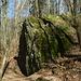 der Chindlistein (ein Findling)