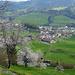 Unten ist's freundlicher. Das Dorf Sattel ist fast erreicht. Links, liebe Habsburger, ist der Morgarten.   Sattel habt ihr nie erreicht. ;-)