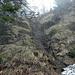 Das Klettersteiglein. Wenn man das erreicht hat, ist die Tortur im Morast gelaufen, ab hier wird's besser.